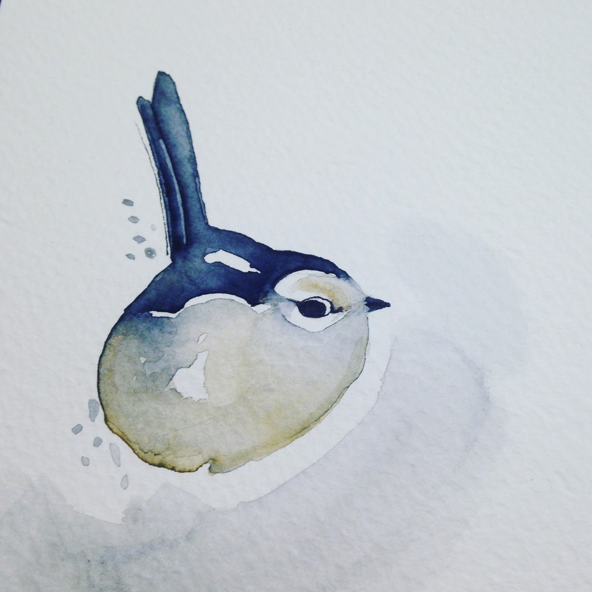 L'uccellino che aveva mangiato troppo